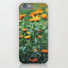 Orange Flowers #1 iPhone 6s Slim Case