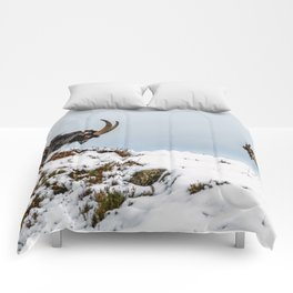 Welsh Mountain Goats Comforters