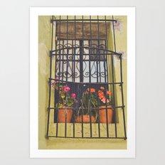 Pretty window in Mexico Art Print
