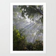 I Saw The Light Art Print