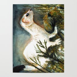 Winter stoat watercolor Poster
