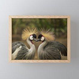 Grey Crowned Crane Bird Framed Mini Art Print