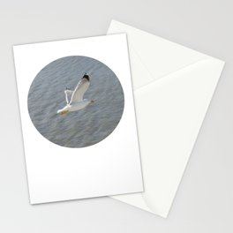 Seagull, bird,  Stationery Cards