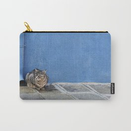 Grey Cat Blue Wall Carry-All Pouch