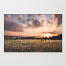 Animals Grazing Canvas Print
