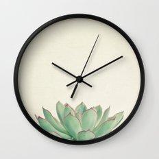 Echeveria Wall Clock