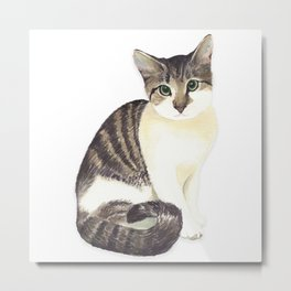 Charming the fat cat that likes to eat a lot Metal Print