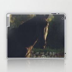 Black Stallion photo, big horse male under the italian sunset, high quality photography, hasselblad Laptop & iPad Skin