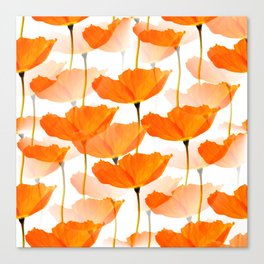 Orange Poppies On A White Background #decor #society6 #buyart Canvas Print