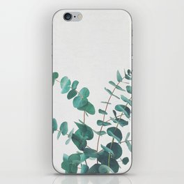 Eucalyptus II iPhone Skin