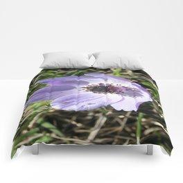 Lilac Blue Anemone Coronaria Wild Flower Comforters