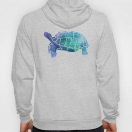 Sulcata Tortoise Silhouette (sparkles) Hoody