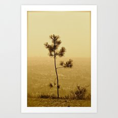If I Were A Tree... Art Print