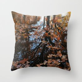 Longbrook Park Reflection Throw Pillow