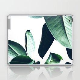 Ficus Elastica #26 #foliage #decor #art #society6 Laptop & iPad Skin