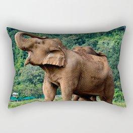 Stand Up And Be Heard Rectangular Pillow