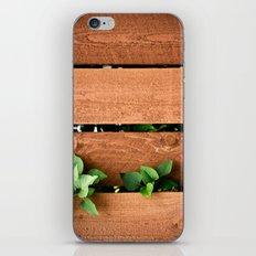 Juxtaposition iPhone & iPod Skin