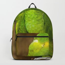 Parrot Backpack