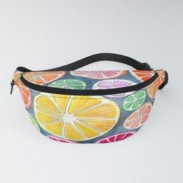 Citrus Painting Fanny Pack