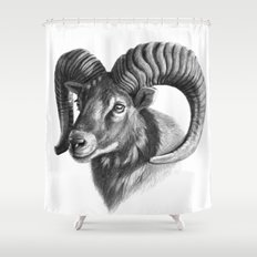 The mouflon G125 Shower Curtain