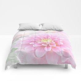 Beauty IV Comforters