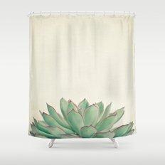 Echeveria Shower Curtain