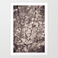 Spring Floral Branches in Sepia Art Print