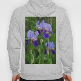 Iris Parade Hoody