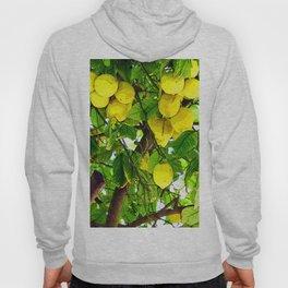 when life gives you lemons... Hoody