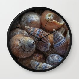 Netted dog whelks Wall Clock