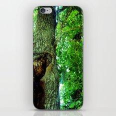 treehole2 iPhone & iPod Skin