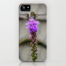 Sweet on top iPhone (5, 5s) Slim Case
