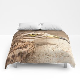 Stone-Curlew Comforters