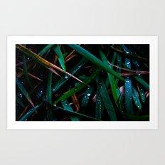Dark Leaves Art Print
