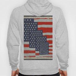 Patriotic Americana Flag Pattern Art Hoody