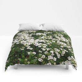 LITTLE ONES Comforters