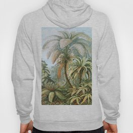 Vintage Fern and Palm Tree Art - Haeckel, 1904 Hoody