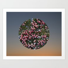 Little Planet #09 Art Print