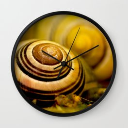Snail shell close up Wall Clock