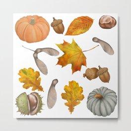 Autumnal Elements Metal Print