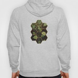 Bees in Space Hoody