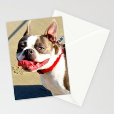 Portrait of a Boston Terrier Stationery Cards