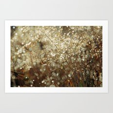 Autumn dew Art Print