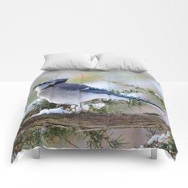 Look Skyward Blue Jay Comforters