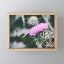 Thistle Framed Mini Art Print