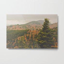 Evergreen Fall (Asheville, North Carolina, USA) Metal Print