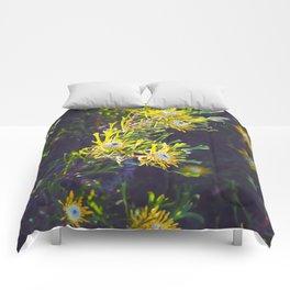 Australian Spring Comforters