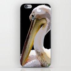 s/t iPhone & iPod Skin