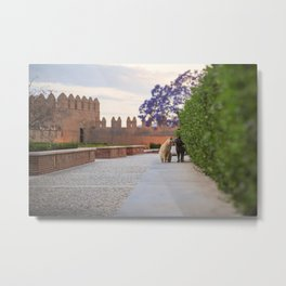 Cats kissing in a castle Metal Print