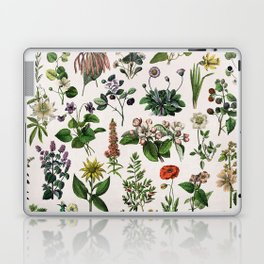 vintage botanical print Laptop & iPad Skin